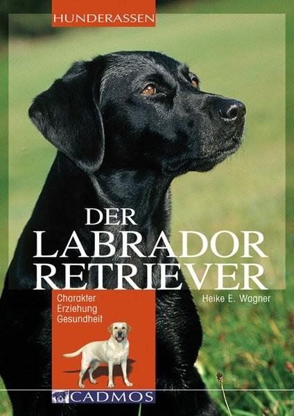 Labrador Retriever: Charakter Erziehung Gesundheit (Cadmos Hunderassen)